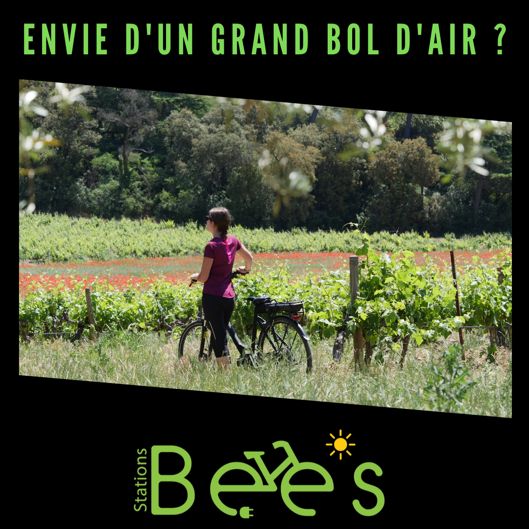 deconfinement plein air stations bees velo electrique covid 19